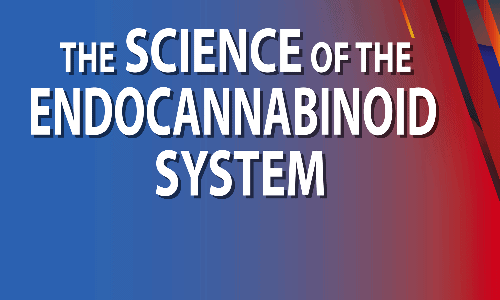 Edocannabinoid-system